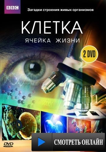 BBC: Клетка / The Cell (2009)